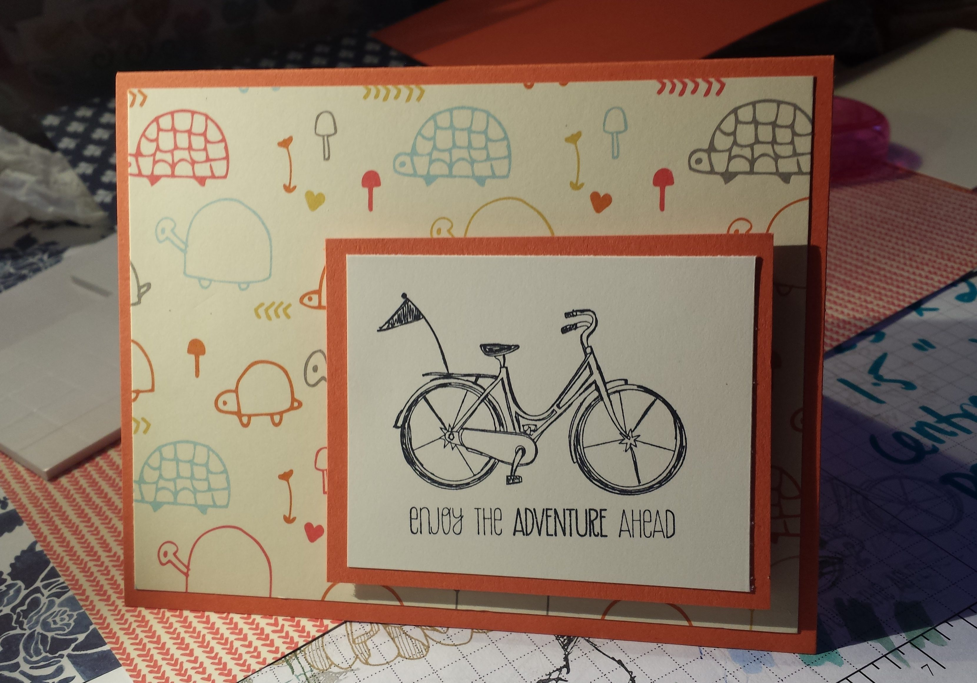 turtles and bicyle. enjoy the adventure ahead
